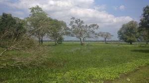 Sri Lanke Februar 2017
